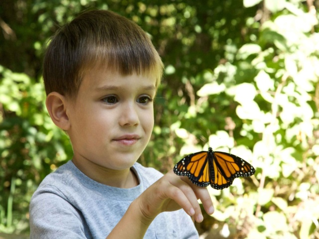 Boy_with_Butterfly